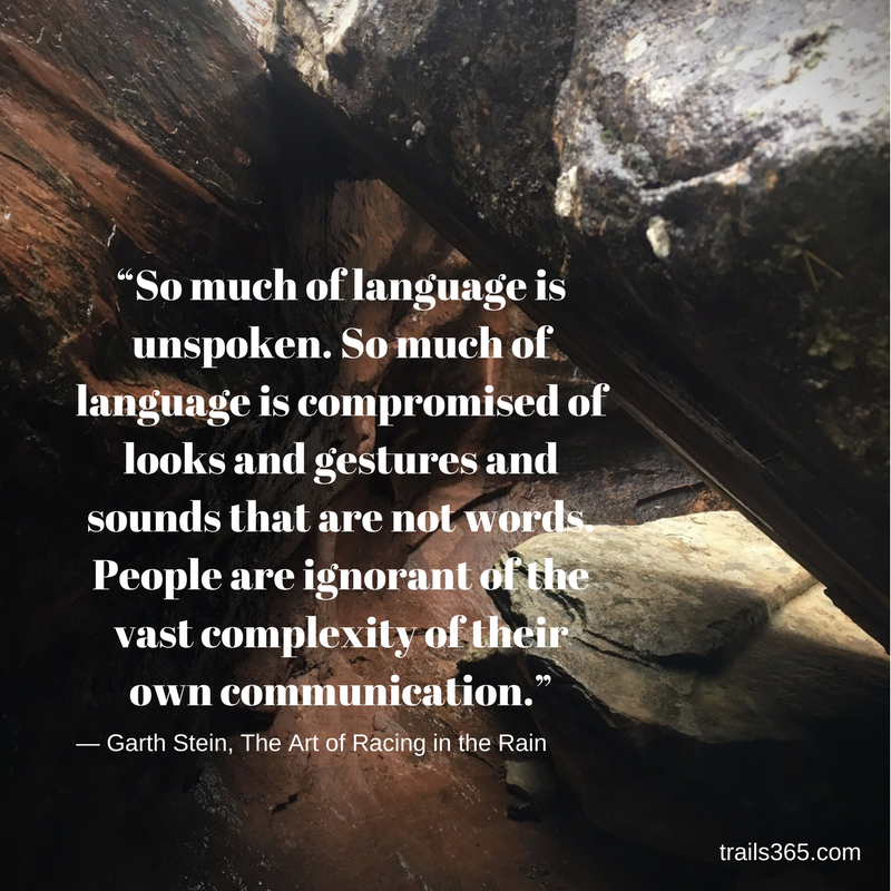 """""""So much of language is unspoken. So much of language is compromised of looks and gestures and sounds that are not words. People are ignorant of the vast complexity of their own communication."""" ― Garth Stein, The Art of Racing in the Rain"""