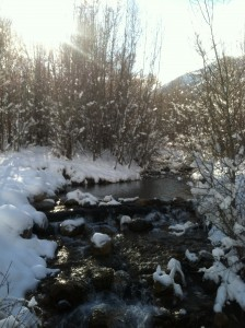 The little stream that descends from Big Springs