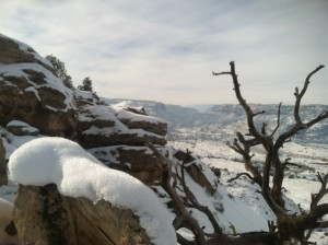 Looking at the monument cliffs from Eagle Tail