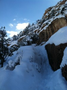 """The trail up to Liberty Cap. Yes, yes that's a """"trail""""."""