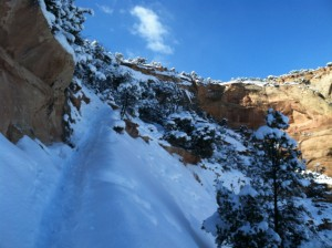 Another shot of the Liberty Cap trail. Kinda sketchy here.