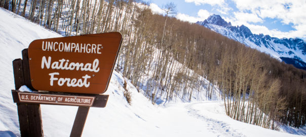 Uncompahgre national forest sign with mount sneffels in winter east dallas fork