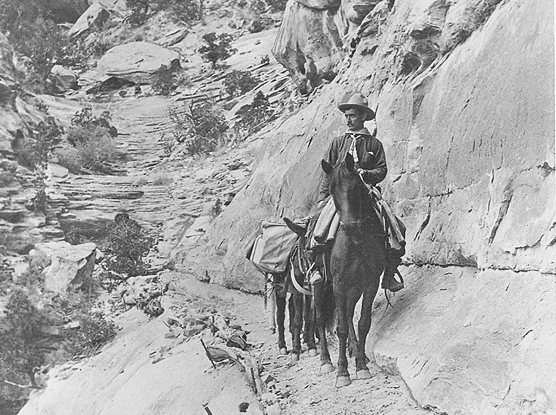 John Otto with horse and mule