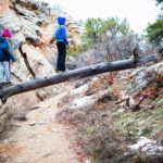 Children on a Fallen Tree - Red Canyon Colorado National Monument by Matt Janson Photography