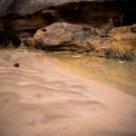 Ute Canyon Mud Patterns Colorado National Monument by Matt Janson Photography